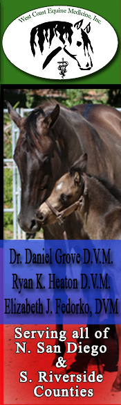 West Coast Equine Medicine, Inc. ~ Serving North San Diego Country ~ South Riverside County ~ California ~ Dr. Daniel H. Grove, DVM ~ Dr. Dawn Brown, DVM ~ Veterinary Medicine ~ On-call 24 hrs a day/7 days a week ~ Radiography and Motorized Dental Equipment ~ Ultra sound ~ advanced Reproductive Techniques