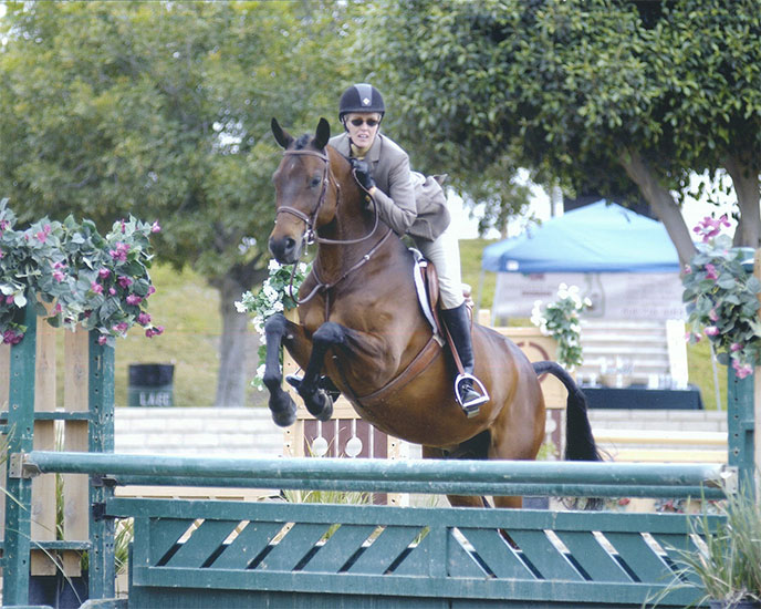 Experienced Hunter/jumper rider available to exercise/groom/provide TLC!  In LA area