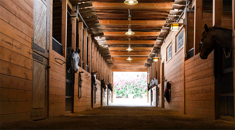 Premier South Pasadena horse training facility FOR LEASE.
