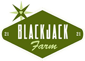 Blackjack Farm is a private 5 acre horse ranch & fitness facility located off Gopher Canyon in Vista.