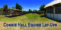 Connie Hall Equine Lay-Ups - Anaheim, California